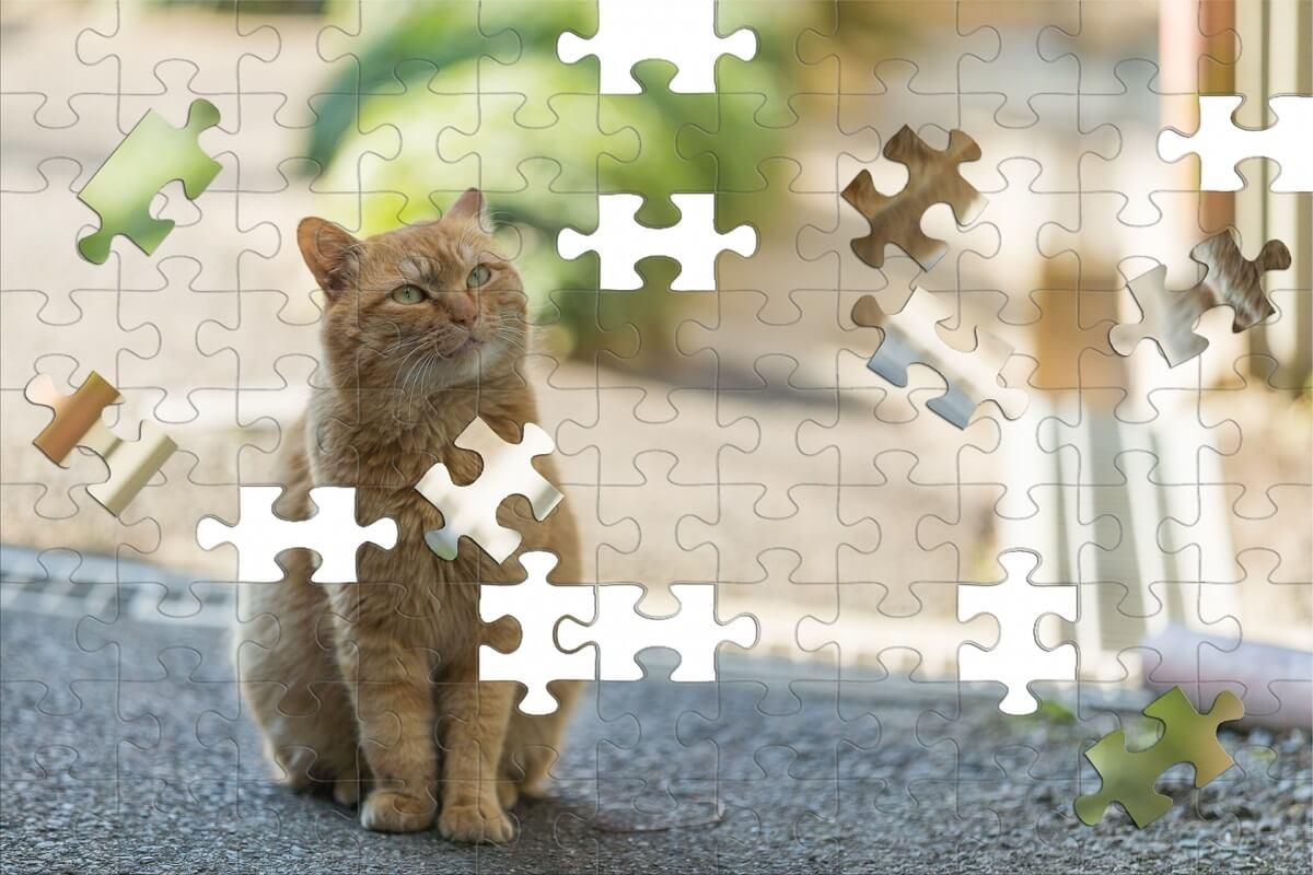賢くなるパズルで算数が好きになる