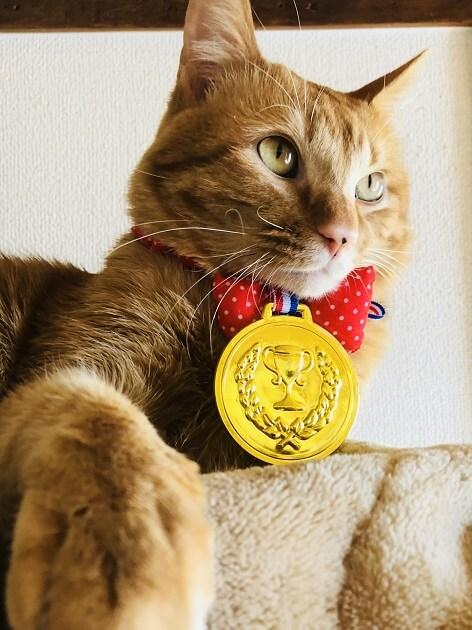 キッズBEEのメダルが届きました